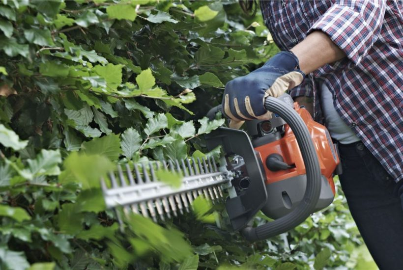 Husqvarna Hedge Trimmer Review